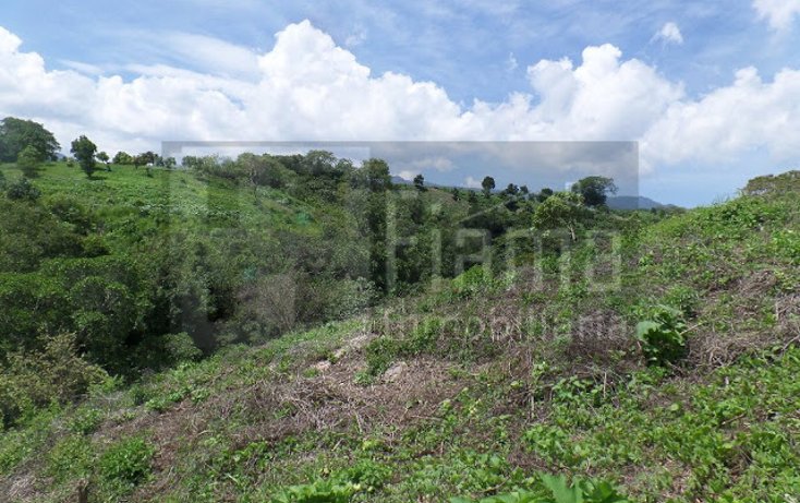 Foto de terreno habitacional en venta en  , el pich?n, tepic, nayarit, 1236859 No. 13
