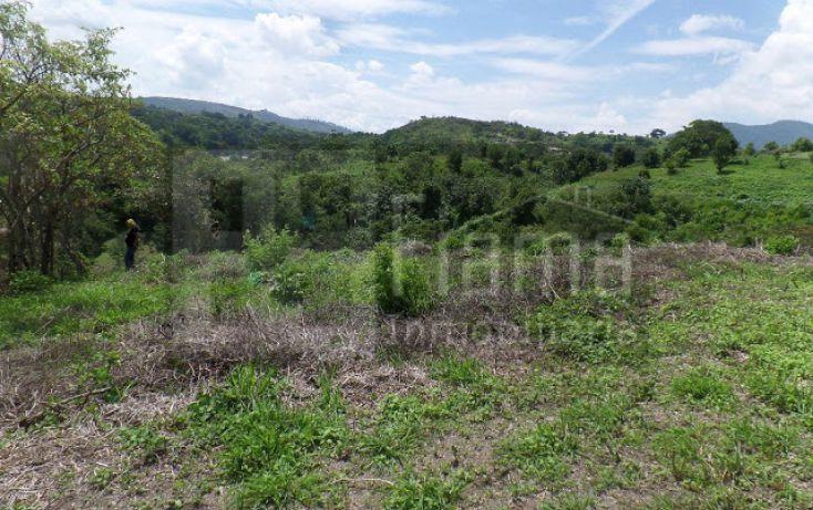 Foto de terreno habitacional en venta en, el pichón, tepic, nayarit, 1236859 no 14