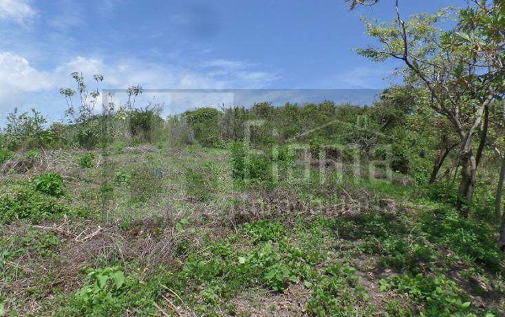 Foto de terreno habitacional en venta en  , el pich?n, tepic, nayarit, 1236859 No. 14