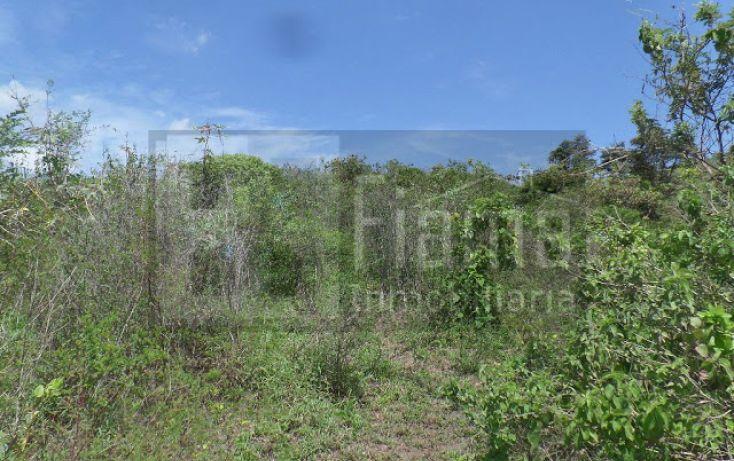 Foto de terreno habitacional en venta en, el pichón, tepic, nayarit, 1236859 no 15