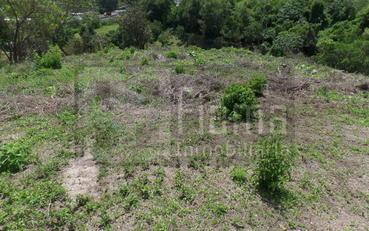 Foto de terreno habitacional en venta en  , el pich?n, tepic, nayarit, 1236859 No. 17