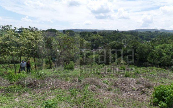 Foto de terreno habitacional en venta en, el pichón, tepic, nayarit, 1236859 no 18