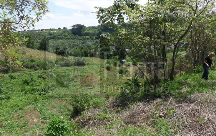 Foto de terreno habitacional en venta en  , el pich?n, tepic, nayarit, 1236859 No. 21