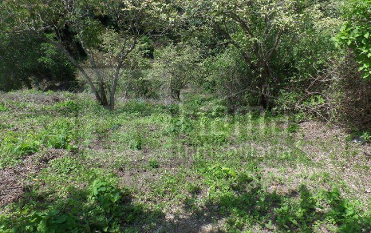 Foto de terreno habitacional en venta en, el pichón, tepic, nayarit, 1236859 no 22
