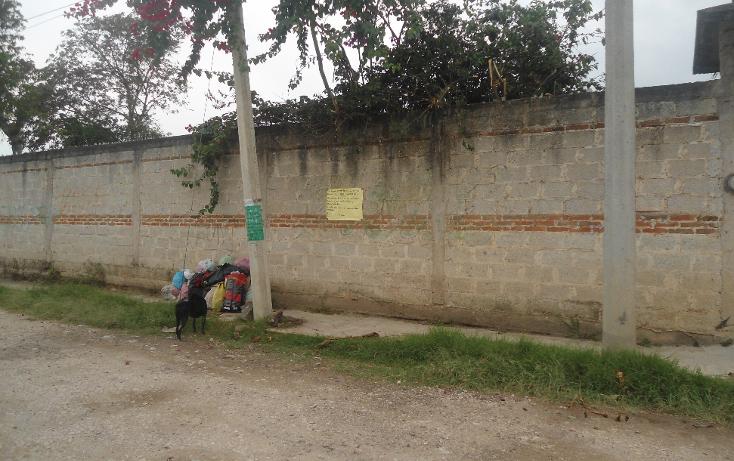 Foto de terreno habitacional en venta en  , el pimiento, coatepec, veracruz de ignacio de la llave, 1950102 No. 07