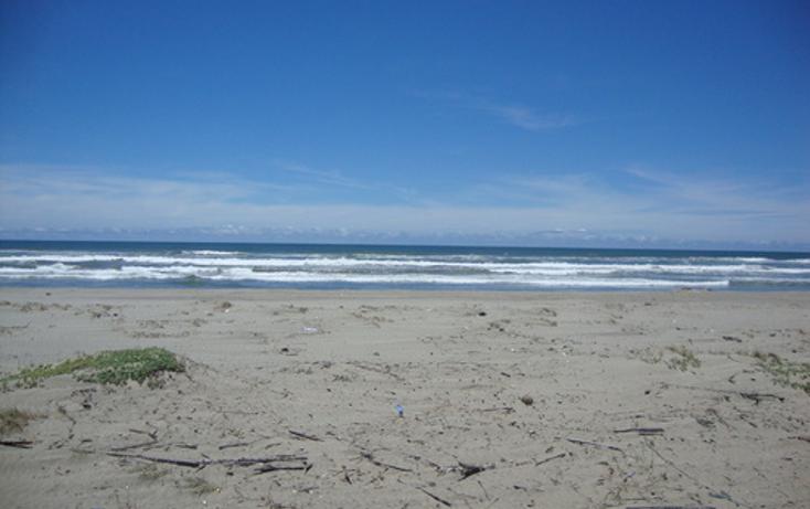 Foto de terreno comercial en venta en  , el podrido, acapulco de juárez, guerrero, 1099475 No. 05