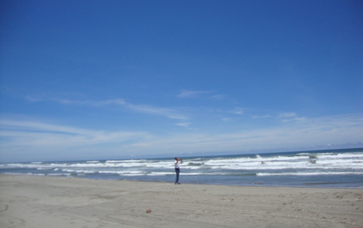 Foto de terreno comercial en venta en  , el podrido, acapulco de juárez, guerrero, 1099475 No. 06