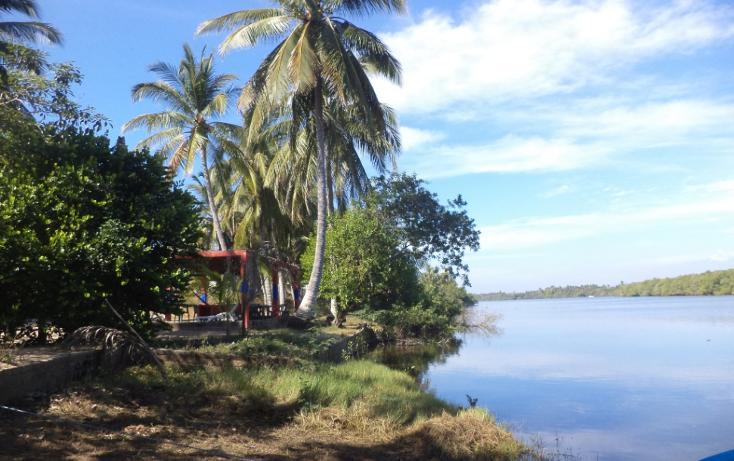 Foto de terreno comercial en venta en  , el podrido, acapulco de juárez, guerrero, 1131467 No. 04