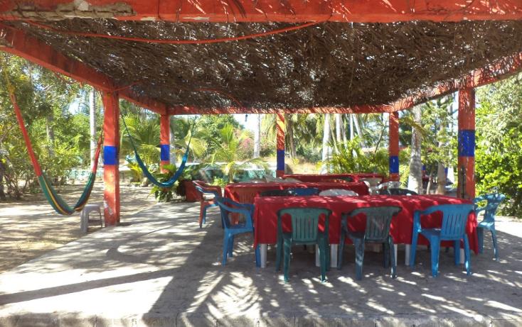 Foto de terreno comercial en venta en  , el podrido, acapulco de juárez, guerrero, 1131467 No. 07