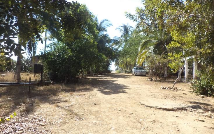 Foto de terreno comercial en venta en  , el podrido, acapulco de juárez, guerrero, 1131467 No. 09
