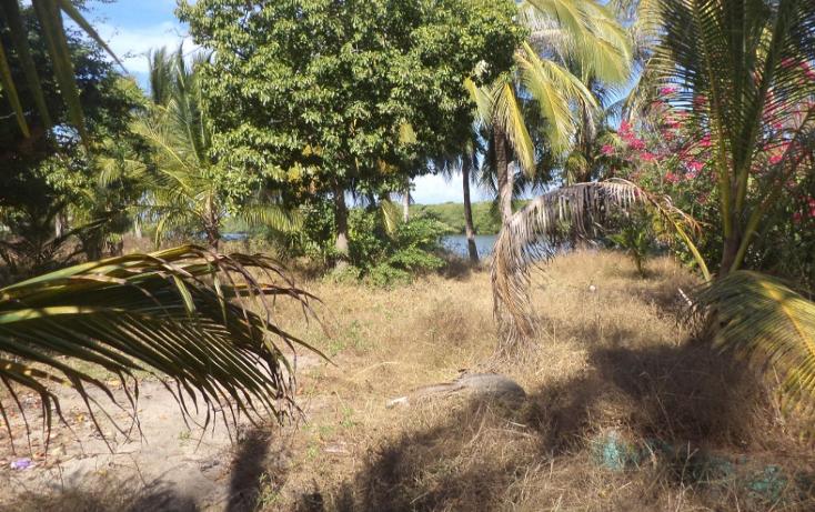 Foto de terreno comercial en venta en  , el podrido, acapulco de juárez, guerrero, 1131467 No. 15