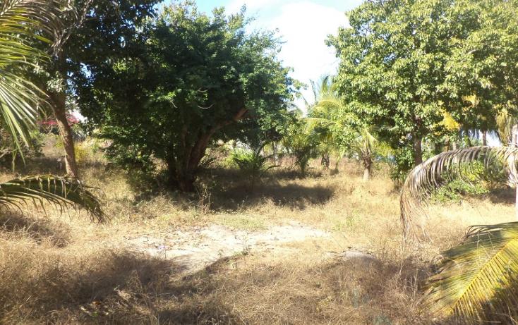 Foto de terreno comercial en venta en  , el podrido, acapulco de juárez, guerrero, 1131467 No. 16