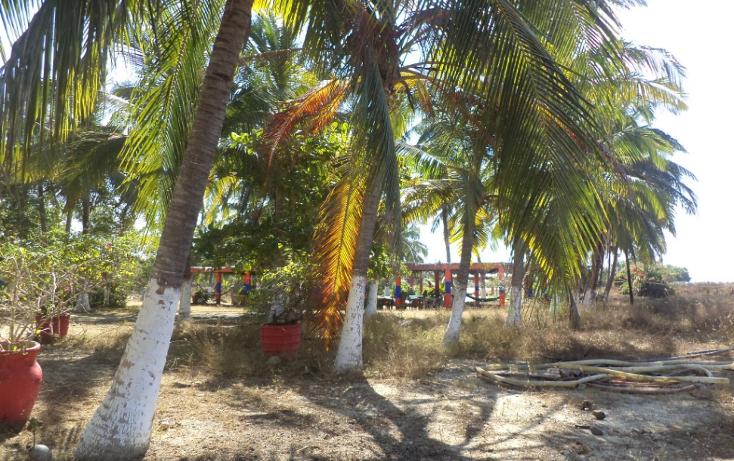 Foto de terreno comercial en venta en  , el podrido, acapulco de juárez, guerrero, 1131467 No. 17