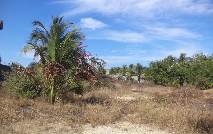 Foto de terreno comercial en venta en  , el podrido, acapulco de juárez, guerrero, 1131467 No. 18