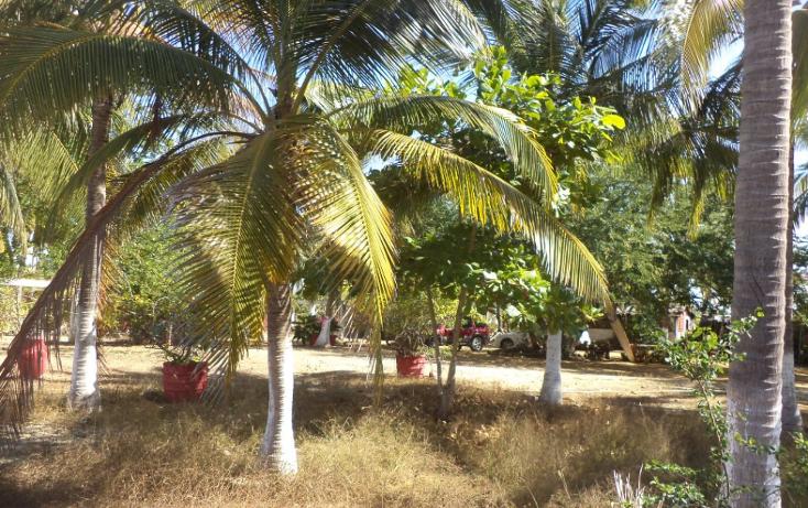Foto de terreno comercial en venta en  , el podrido, acapulco de juárez, guerrero, 1131467 No. 19