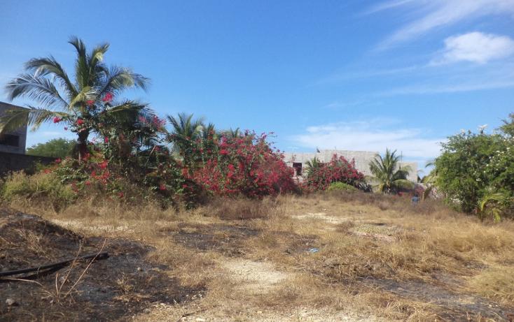 Foto de terreno comercial en venta en  , el podrido, acapulco de juárez, guerrero, 1131467 No. 20