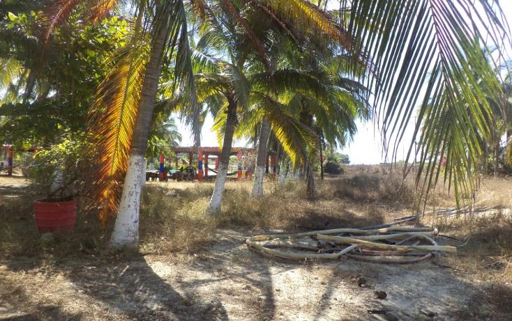 Foto de terreno comercial en venta en  , el podrido, acapulco de juárez, guerrero, 1131467 No. 21