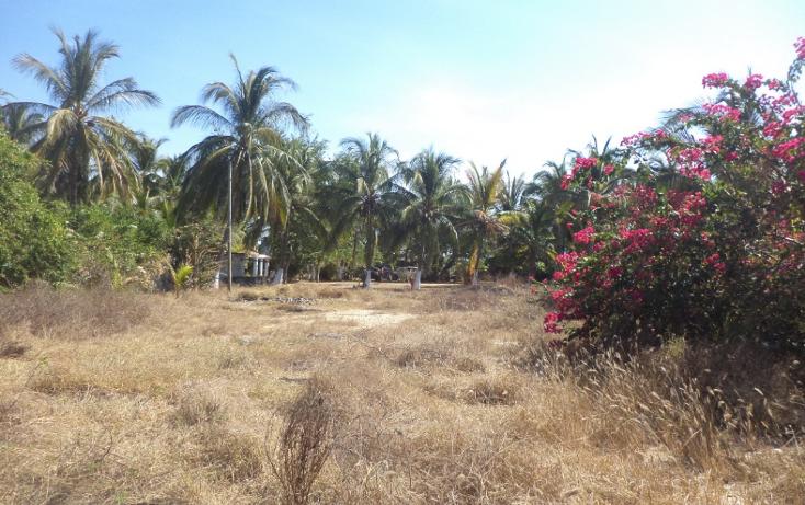Foto de terreno comercial en venta en  , el podrido, acapulco de juárez, guerrero, 1131467 No. 22
