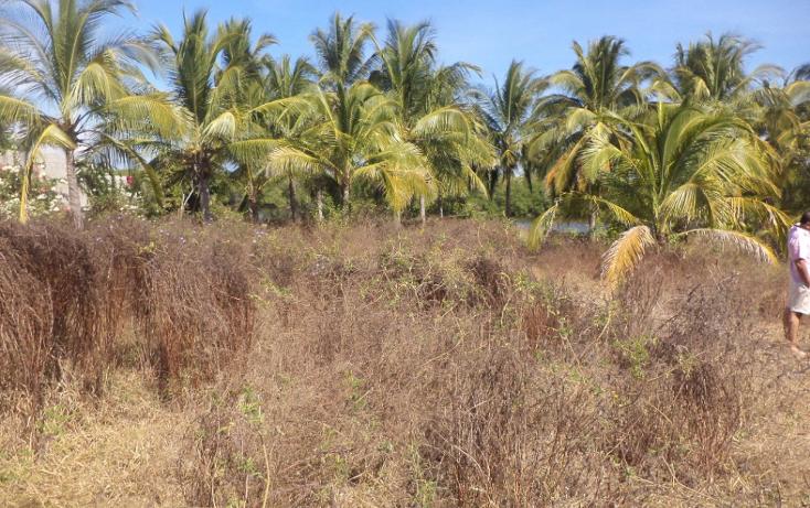 Foto de terreno comercial en venta en  , el podrido, acapulco de juárez, guerrero, 1131467 No. 23