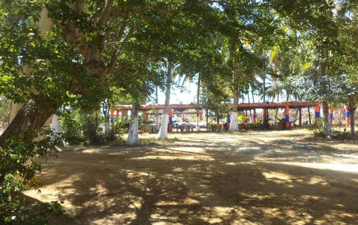 Foto de terreno comercial en venta en  , el podrido, acapulco de juárez, guerrero, 1131467 No. 24