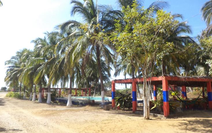Foto de terreno comercial en venta en  , el podrido, acapulco de juárez, guerrero, 1131467 No. 26
