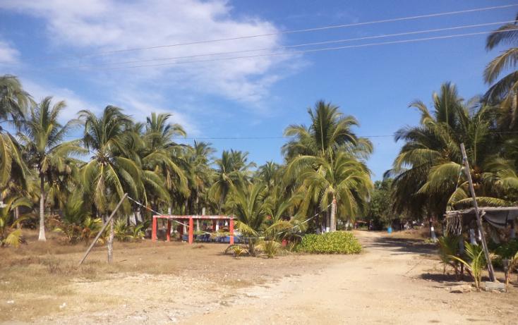 Foto de terreno comercial en venta en  , el podrido, acapulco de juárez, guerrero, 1131467 No. 29
