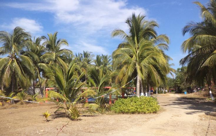 Foto de terreno comercial en venta en  , el podrido, acapulco de juárez, guerrero, 1131467 No. 32