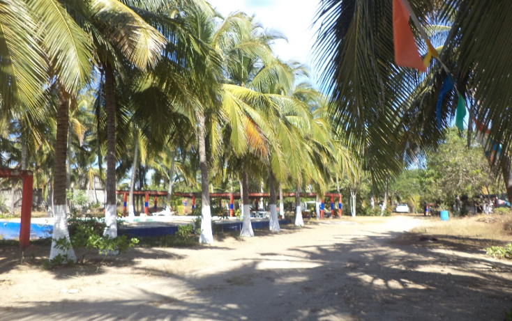 Foto de terreno comercial en venta en  , el podrido, acapulco de juárez, guerrero, 1131467 No. 33