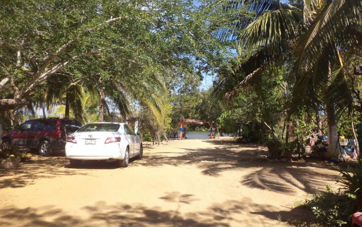 Foto de terreno comercial en venta en  , el podrido, acapulco de juárez, guerrero, 1131467 No. 34