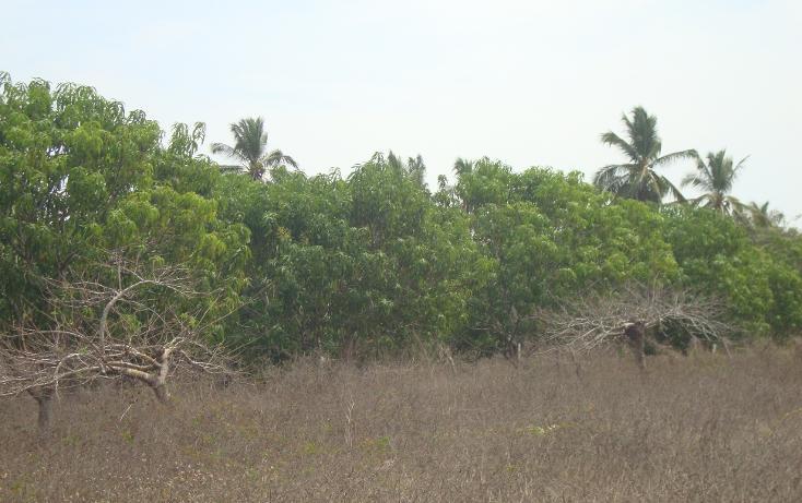 Foto de terreno habitacional en venta en  , el podrido, acapulco de juárez, guerrero, 1701034 No. 01