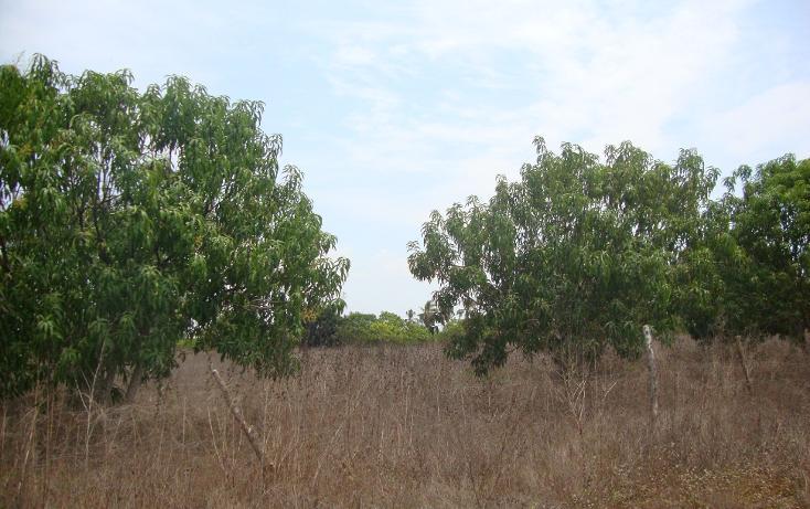 Foto de terreno habitacional en venta en  , el podrido, acapulco de juárez, guerrero, 1701034 No. 04