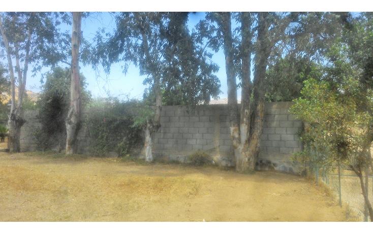 Foto de casa en venta en  , el porvenir, ensenada, baja california, 1081327 No. 05