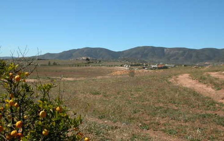 Foto de terreno habitacional en venta en  , el porvenir, ensenada, baja california, 1271707 No. 05