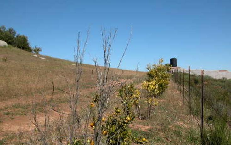 Foto de terreno habitacional en venta en  , el porvenir, ensenada, baja california, 1271707 No. 08