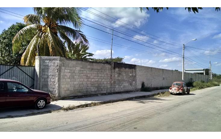 Foto de terreno comercial en renta en  , el porvenir, m?rida, yucat?n, 1167161 No. 03