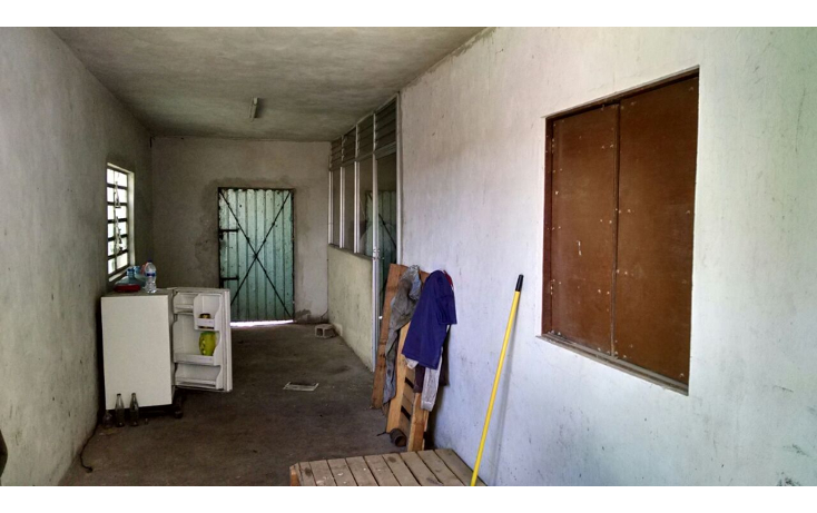 Foto de terreno comercial en renta en  , el porvenir, m?rida, yucat?n, 1167161 No. 04