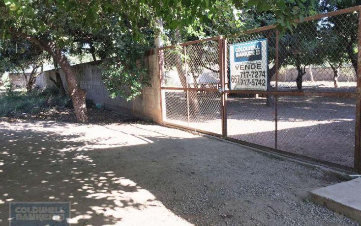 Foto de terreno habitacional en venta en el porvenir, san pedro, navolato, sinaloa, 1654187 no 02