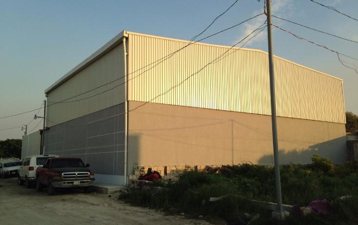 Foto de nave industrial en renta en  , el potrero, carmen, campeche, 1178551 No. 15