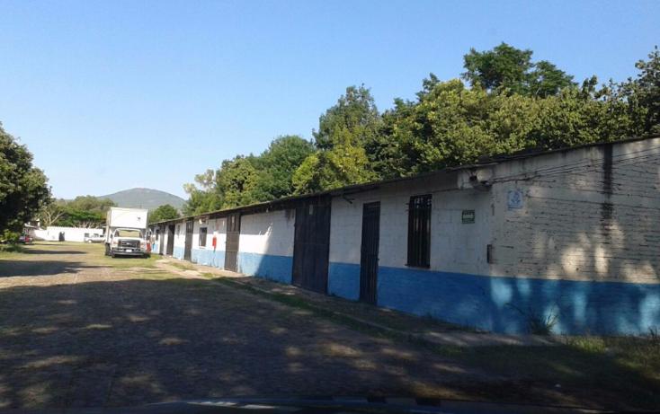 Foto de terreno comercial en renta en  , el pueblito, corregidora, querétaro, 1352857 No. 03
