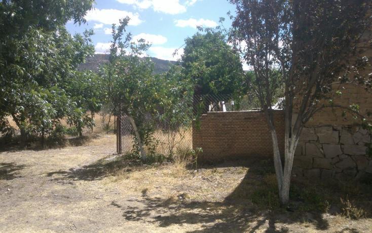 Foto de rancho en venta en  , el pueblito, durango, durango, 1363283 No. 06