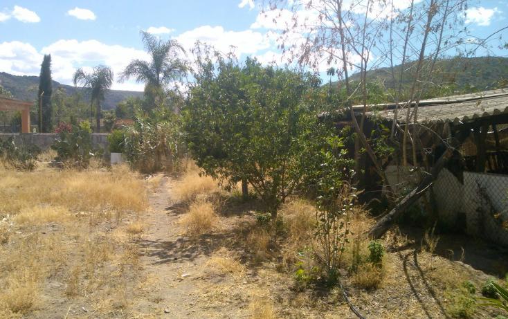 Foto de rancho en venta en  , el pueblito, durango, durango, 1363283 No. 07