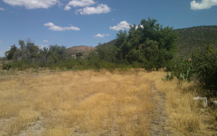 Foto de rancho en venta en  , el pueblito, durango, durango, 1363283 No. 09