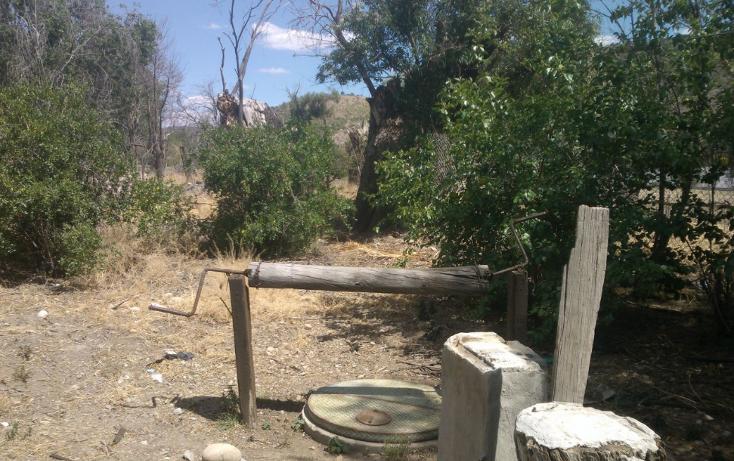 Foto de rancho en venta en  , el pueblito, durango, durango, 1363283 No. 12