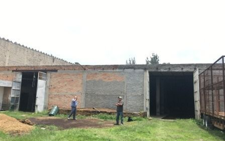Foto de terreno comercial en renta en  , el quince centro, el salto, jalisco, 1463263 No. 03