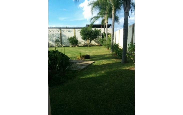 Foto de rancho en venta en  , el ranchito, tequila, jalisco, 1406163 No. 17