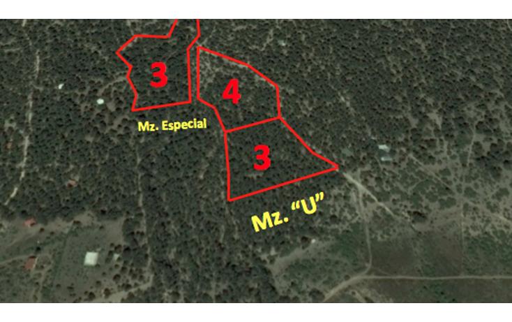 Foto de terreno habitacional en venta en  , el refugio, arteaga, coahuila de zaragoza, 1638552 No. 04