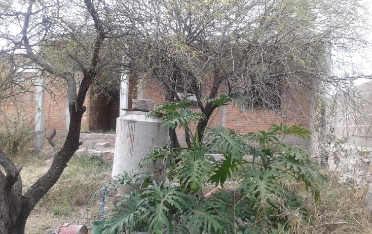 Foto de terreno habitacional en venta en  , el refugio (el conejo), durango, durango, 1192993 No. 04