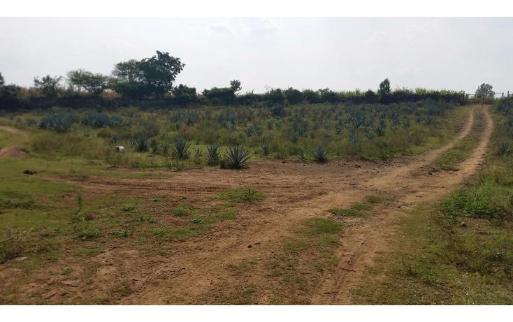 Foto de terreno comercial en venta en  , el refugio, tala, jalisco, 1680746 No. 01