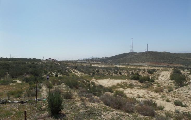Foto de terreno comercial en venta en  , el refugio, tecate, baja california, 1191937 No. 02