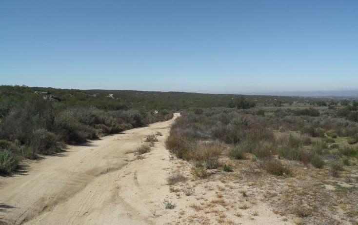 Foto de terreno comercial en venta en  , el refugio, tecate, baja california, 1191941 No. 02